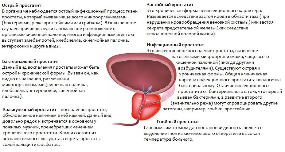 Простатит влияние температуры микроволновая гипертермия при лечении простатита